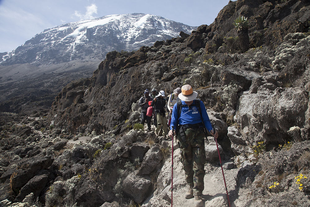Photos of Mt Kilimanjaro